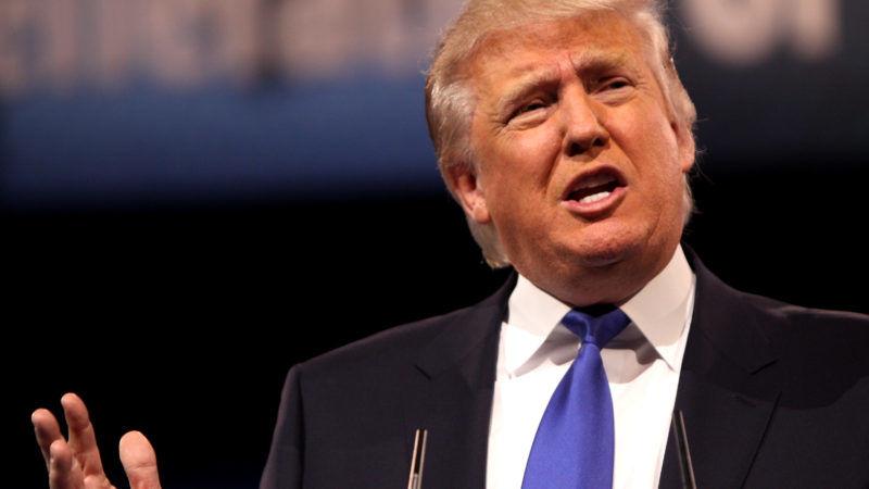 Donald Trump, źródło: Wikipedia