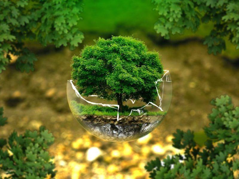 Circular Economy: Projektowanie // źródło: Pixabay