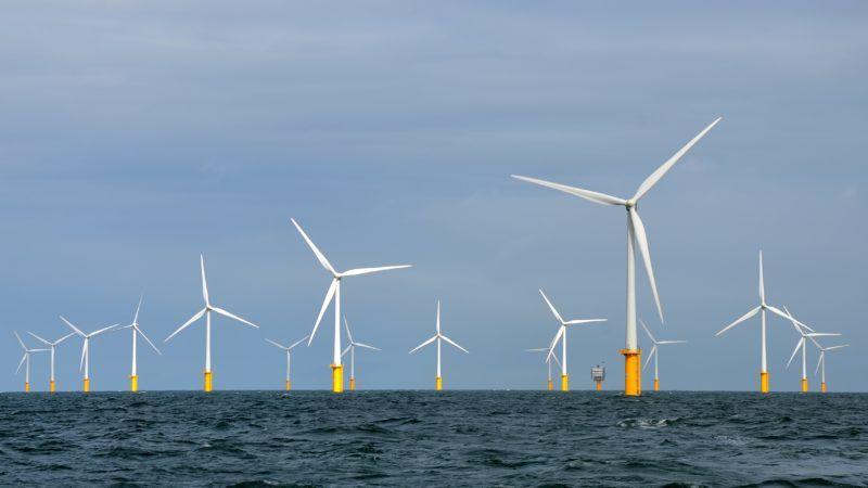 Belgijska farma wiatrowa na Morzu Północnym, źródło Wikipedia