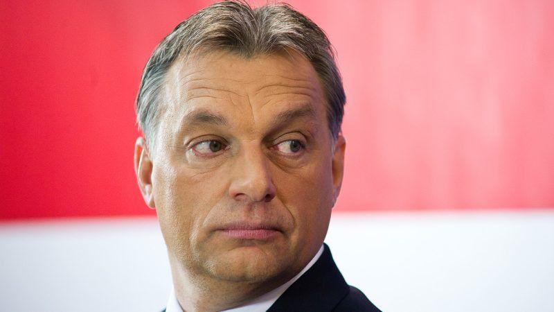 Viktor Orban, źródło Wikipedia