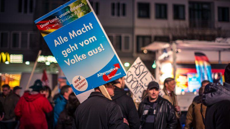 Manifestacja AfD, źródło: Flickr, fot. Stephan Dinges