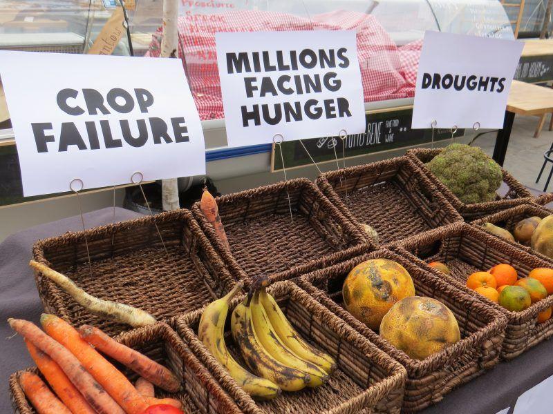 Zmiany klimatyczne odbijają się negatywnie także na rynku żywności, źródło: Flickr/Oxfam International