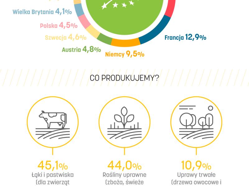 Rolnictwo ekologiczne w UE - INFOGRAFIKA EURACTIV