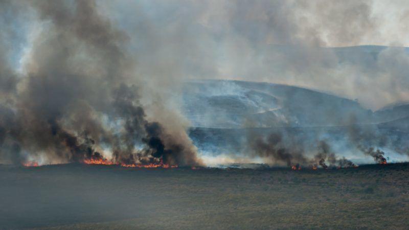 Pożary w Grecji, źródło: Flickr fot. Grace Trivino