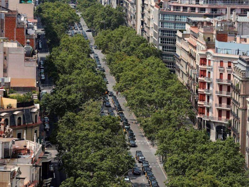Strajk taksówkarzy w Barcelonie, źródło: Twitter/Elite Taxi (@Elite_Taxibcn)