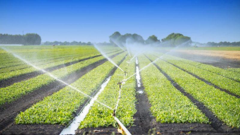 Znaczenie gleby jest pomijane w debacie o zmianie klimatu. Źródło: Komisja Europejska