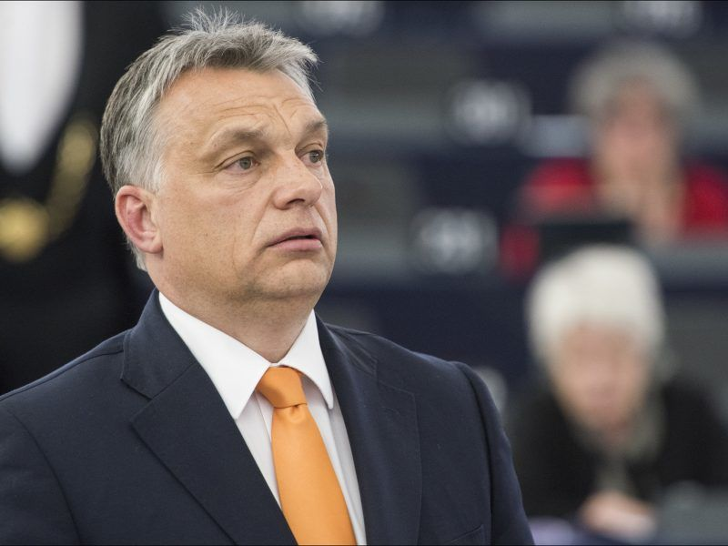 Premier Węgier Viktor Orban, źródło: Flickr/European Parliament