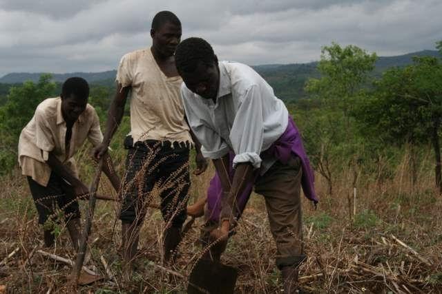 Rolnictwo w Afryce potrzebuje inwestycji.