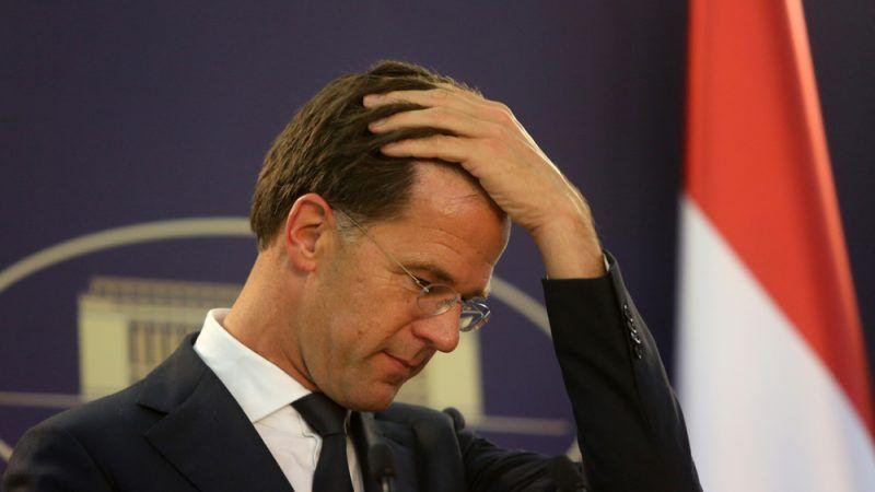Holenderski rząd przyznał, że uszanuje orzeczenie