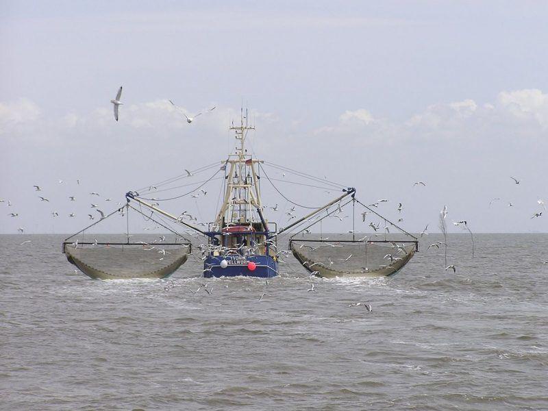 Głównym wnioskiem ze spotkania ministrów w Luksemburgu jest ochrona społeczności rybackich na Morzu Bałtyckim, przy jednoczesnym zapewnieniu długoterminowych zasobów rybnych.