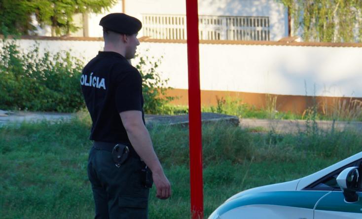 Słowacki policjant, źródło: Wikipedia, fot. Kiwiev (CC BY. 2.0)edia, fot. Kiwiev