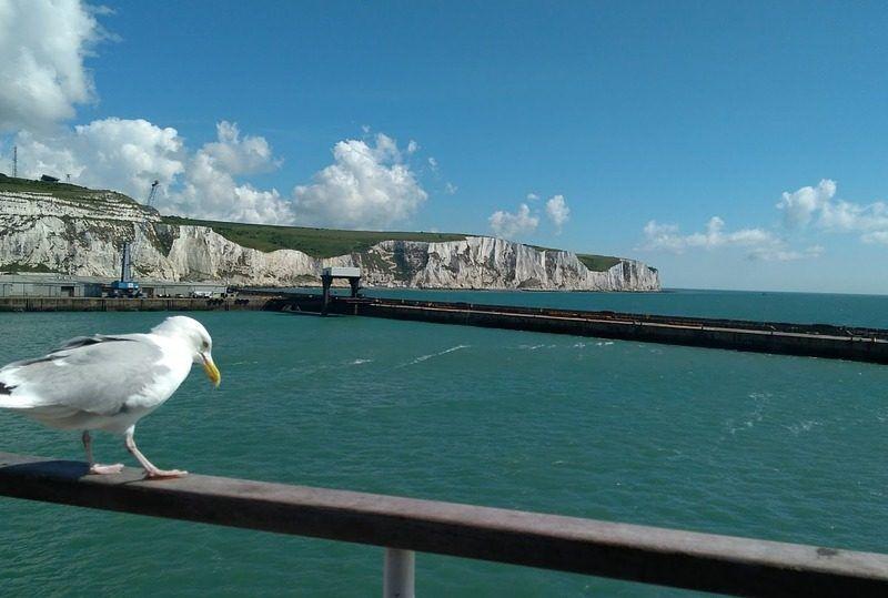 Kanał La Manche, źródło: Pixabay, fot. jirrinka
