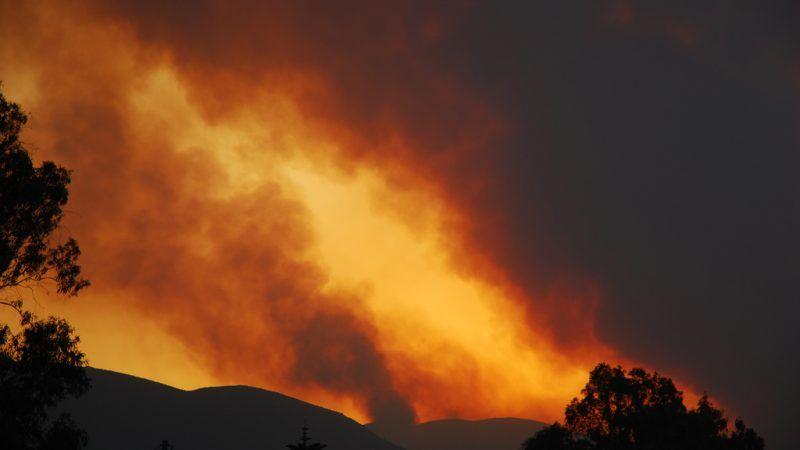 Pożar lasu w Grecji, źródło: Flickr, fot. Carl Osbourn