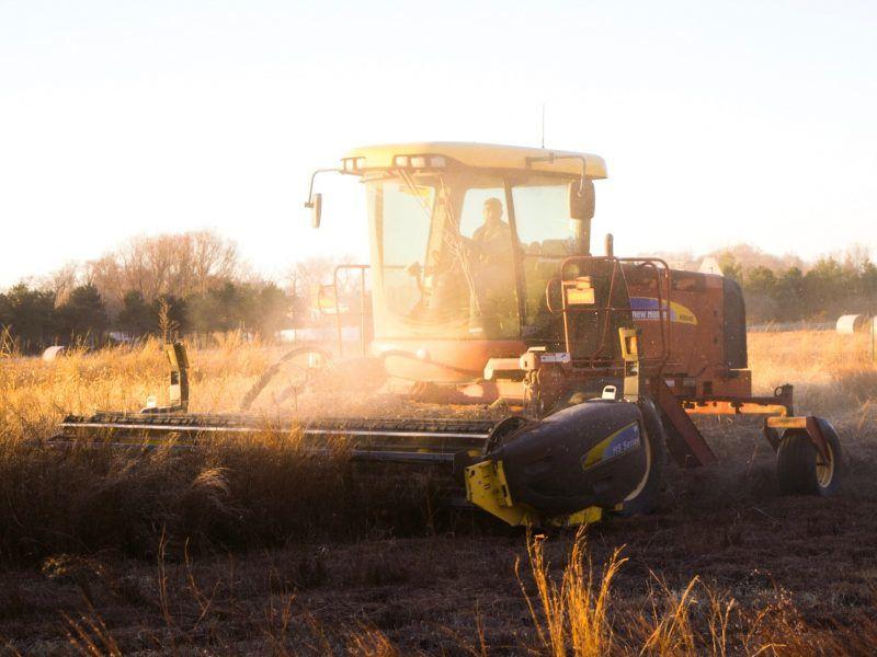 Fields, photo by Noah Buscher on Unsplash
