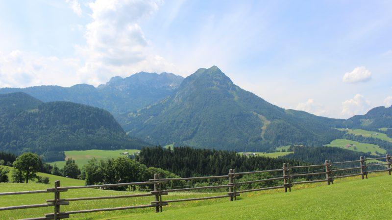 Alpejska łąka w Austrii, źródło: PxHere (CC0 Public Domain)