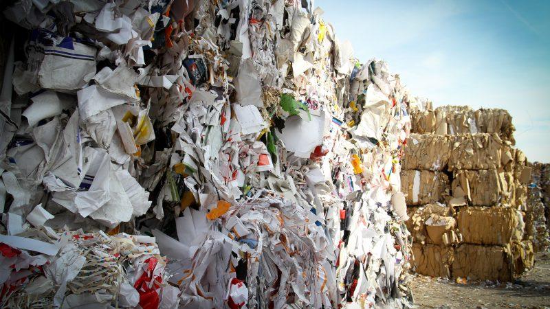 Śmieci zdjęcie Bas Emmen źródło: Unsplash