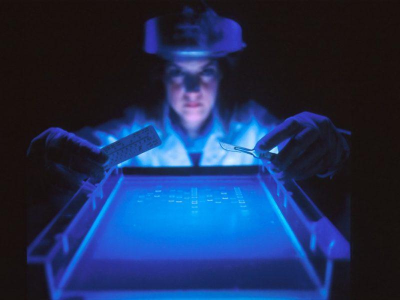 Ile firm pracuje nad szczepionką na koronawirusa?