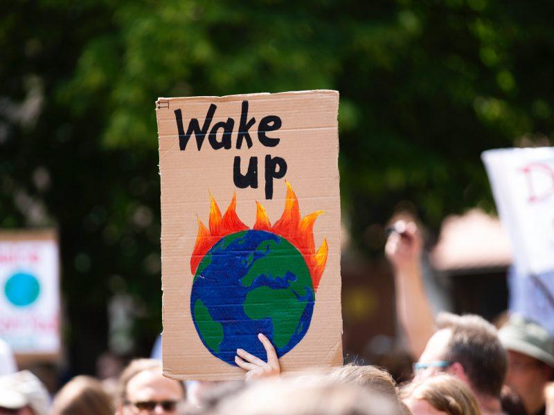 Strajk klimatyczny [Unsplash]