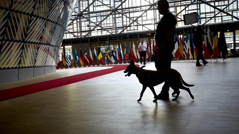 Przed szczytami UE budynek Europa w Brukseli, gdzie się odbywają spotkania przywódców państw członkowskich, sprawdzany jest m.in. pod kątem obecności materiałów wybuchowych przez szkolone do tego psy. Tym razem jednak potrzebne będąjeszcze dodatkowe zabezpieczenia sanitarne z powodu pandemii koronawirusa (źródło: Flickr/European Council/CC BY-NC-ND 2.0)