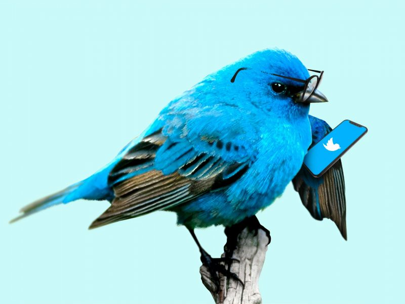 """Twitter oznacza konta """"państwowych mediów"""" oraz nie poleca ich jużużytkownikom (Photo by Morning Brew on Unsplash)"""