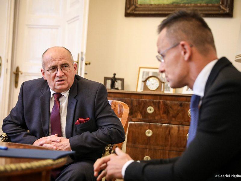 Polski minister spraw zagranicznych Zbigniew Rau i jego węgierski odpowiednik Péter Szijjártó podczas spotkania w Budapeszcie