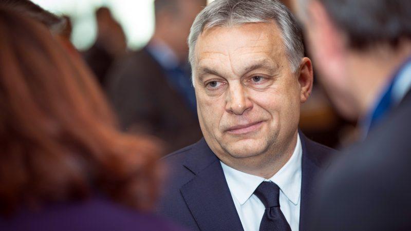 fidesz-orban-tusk-weber-parlament-europejski-europejska-partia-ludowa, Tusk, Kaczynski-PiS-Unia Europejska