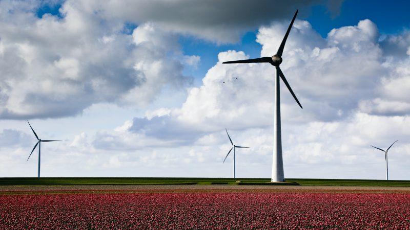 OZE, elektrownia wiatrowa, polska wieś