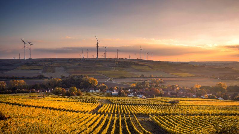 Zmiany klimatyczne i wyzwania środowiskowe w polskim rolnictwie. Źródło: Karsten Wurth [Unsplash]