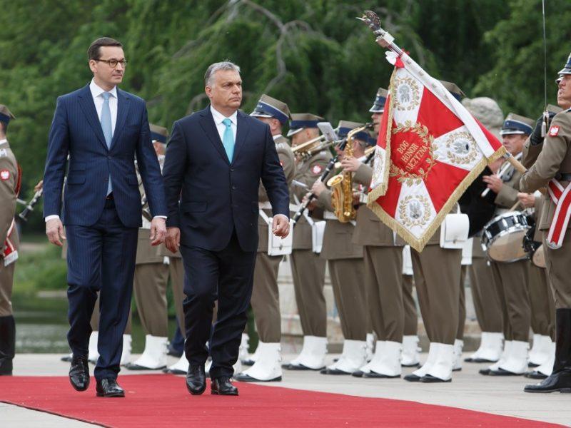 Premierzy Polski i Węgier Mateusz Morawiecki oraz Viktor Orban szykująsię na poważnąbatalię na temat budżetu UE na grudniowym szczycie w Brukseli, źródło: KPRM (CC0 Public Domain)
