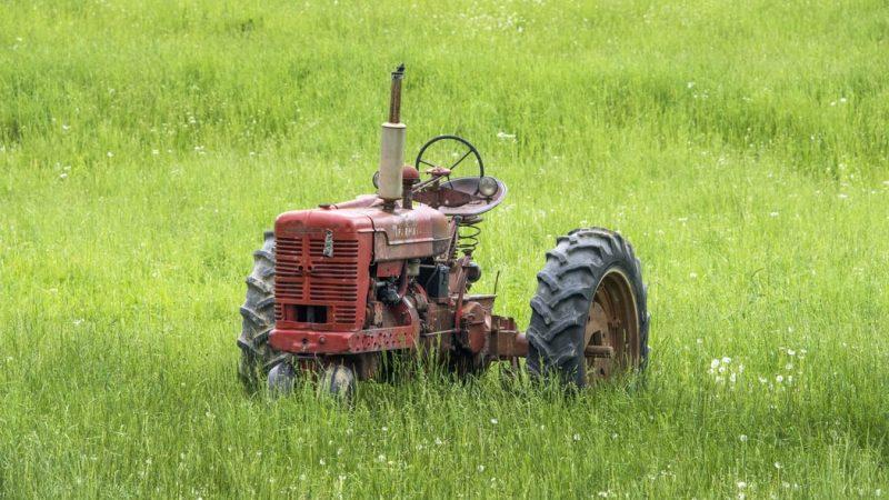 rolnictwo, WPR, unia europejska