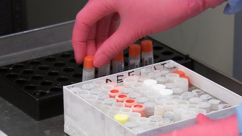 Bułgaria, koronawirus, pandemia, COVID-19, SARS-CoV-2, szczepionka