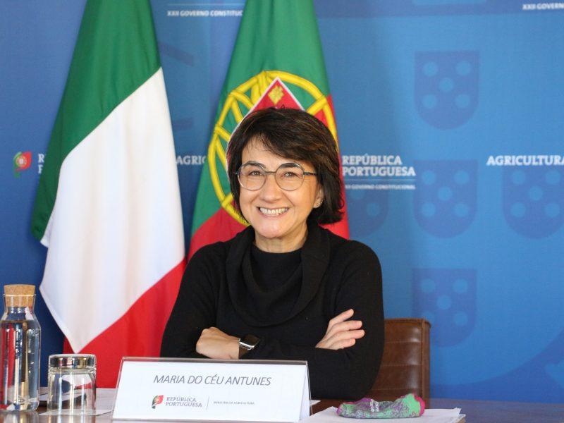 Portugalia, rolnictwo, pandemia, Unia Europejska, Rada UE
