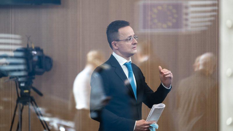 Węgry, Polska, Rosja, Chiny, Unia Europejska, współpraca strategiczna, Sputnik V, geopolityka, migracja