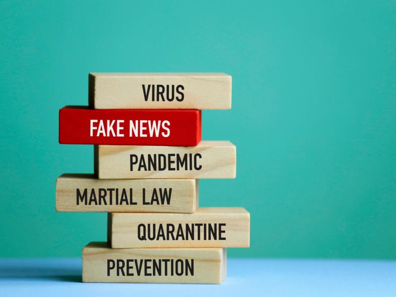 V4, Grupa Wyszehradzka, Visegrad, pandemia, fake news, dezinformacja