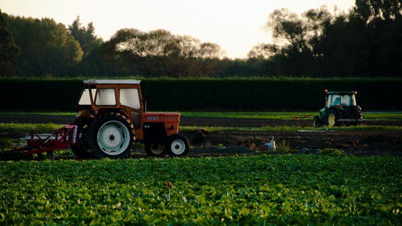 rolnictwo-unia-europejska-innowacje-wspolna-polityka-rolna