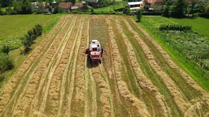 spoldzielnie-rolnictwo-rumunia-fundusze-UE-WPR-Unia-europejska-komisja-europejska