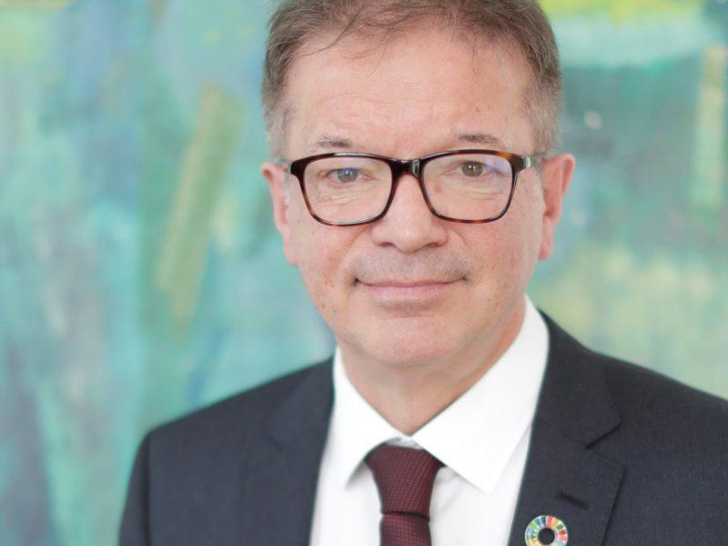 Rudolf Anschober, Austria, minister zdrowia