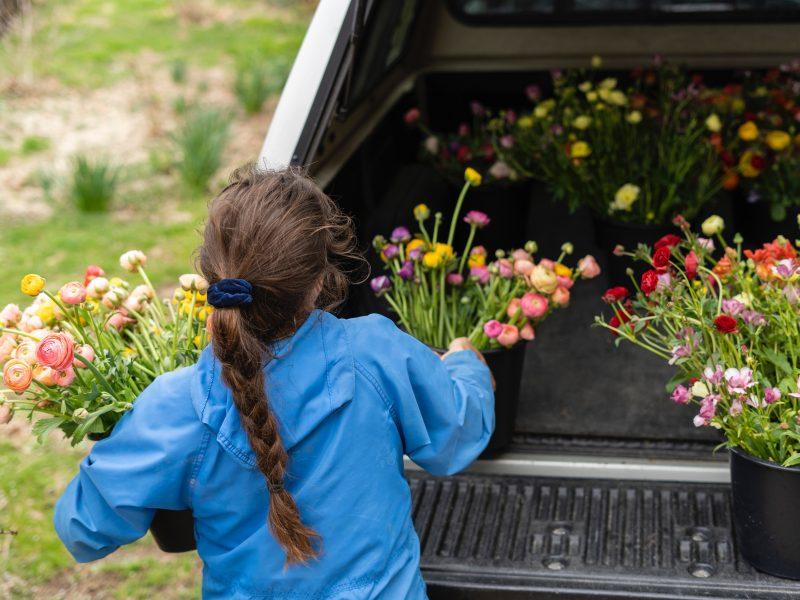 Coraz mniej młodych ludzi chce przejmować rodzinne gospodarstwa rolne lub ogrodnicze (Photo by Zoe Schaeffer on Unsplash)