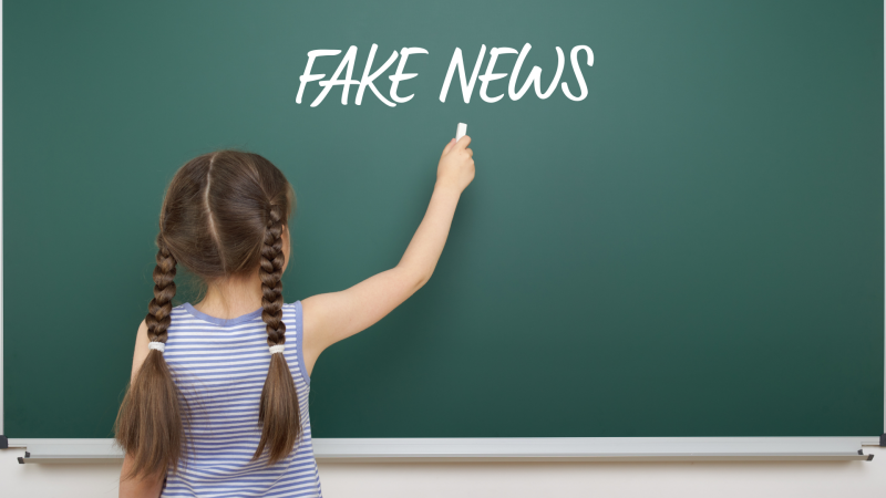 fake-news-dezinformacja-unia-europejska-ue-juliane-von-reppert-bismarck