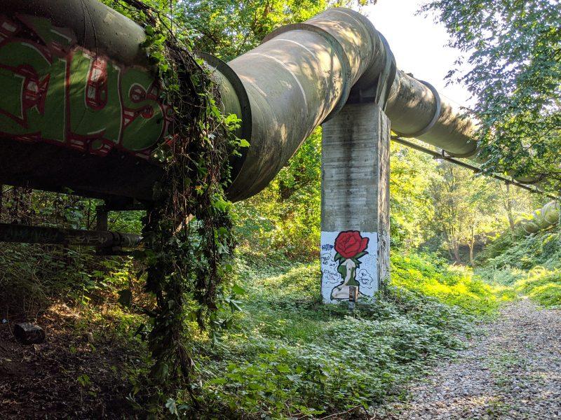 Rurociąg Colonial Pipeline wznowił pracę po ataku hakerów (Photo by Florian Wächter on Unsplash)