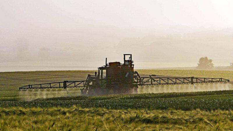 rolnictwo, pole, pestycydy, rośliny