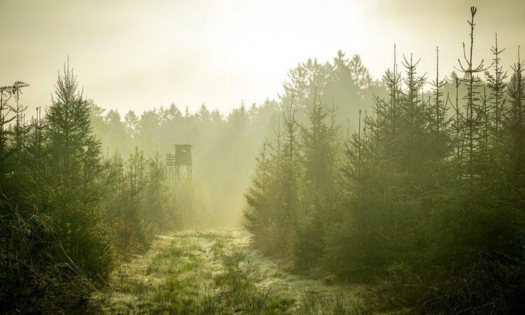 Czechy, Polska, Śnieżnik, Turów, Unia Europejska, Komisja Europejska. TSUE, środowisko, ekologia