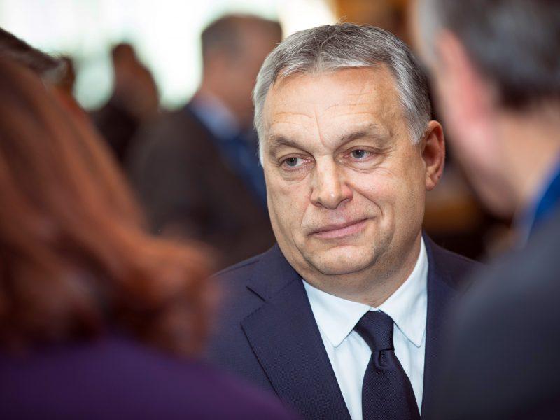 Victor Orban, Węgry, Serbia, Unia Europejska, Belgrad