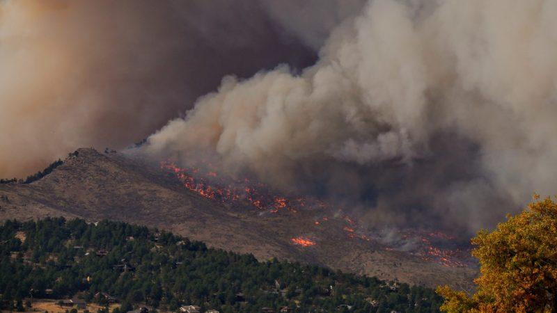 Pożary nawiedzają Cypr co roku latem (Photo by Malachi Brooks on Unsplash)