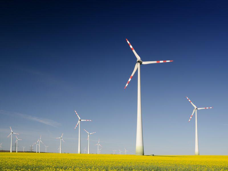 energia odnawialna, węgiel, atom, OZE, Fitfor55, pandemia