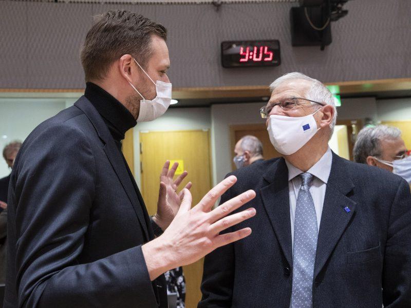 Gabrielius Landsbergis, Litwa, Josep Borrell, UE