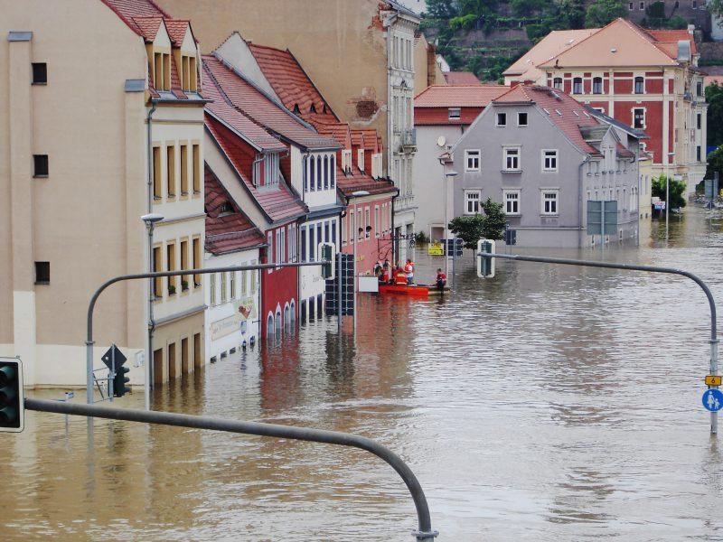 niemcy-powódź-holandia-belgia-ekologia-