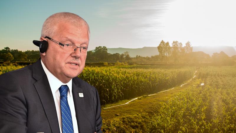 """Wspólna polityka rolna: """"Będzie zależna od tego, jak państwa członkowskie wykorzystają dostępne instrumenty"""""""