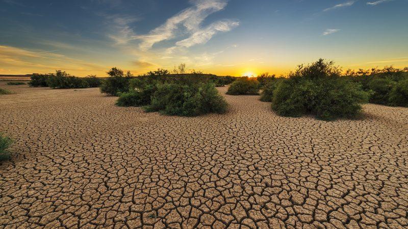 susza, klimat, zmiany klimatyczne, katastrofa klimatyczna, Światowa Organizacja Meteorologiczna, Atlas,
