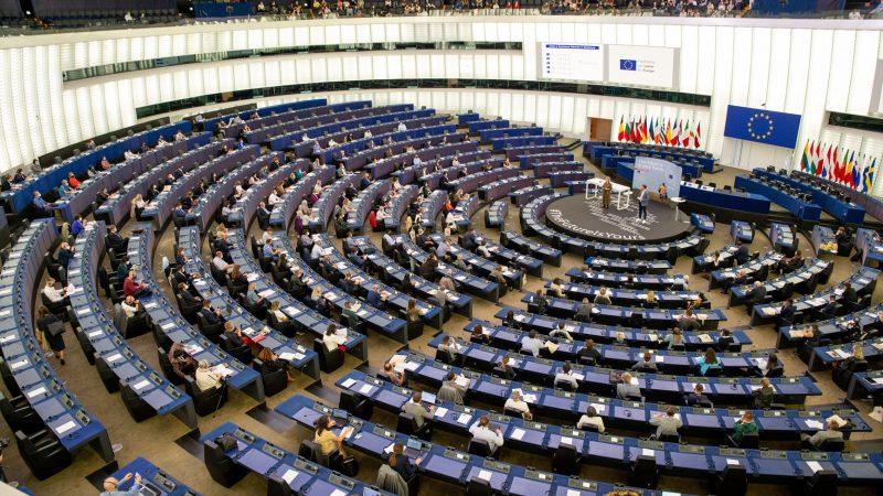 """Konferencja w sprawie przyszłości Europy: Obywatele zabierają głos w sprawie środowiska. """"Musimy się wycofać i ponownie przemyśleć, jakie są prawdziwe wartości"""""""